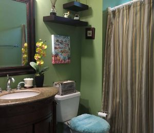 Bathroom Before Redesign