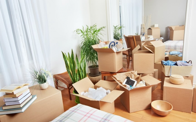 Moving Preparation ~Moving Assistance